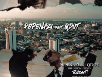 VIDEO: Pepenazi Ft. Qdot - Tonight