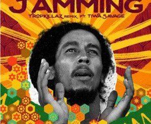 Bob Marley Ft. Tiwa Savage, Tropkillaz - Jamming (Remix)