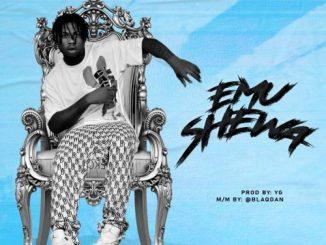 Mr Gbafun - Emu Shewa