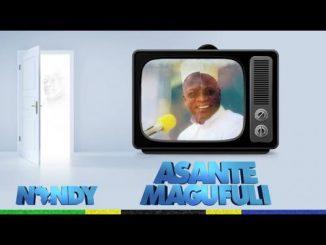 Nandy - Ahsante Magufuli