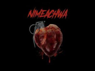 Young DareSalama - Nimeachwa
