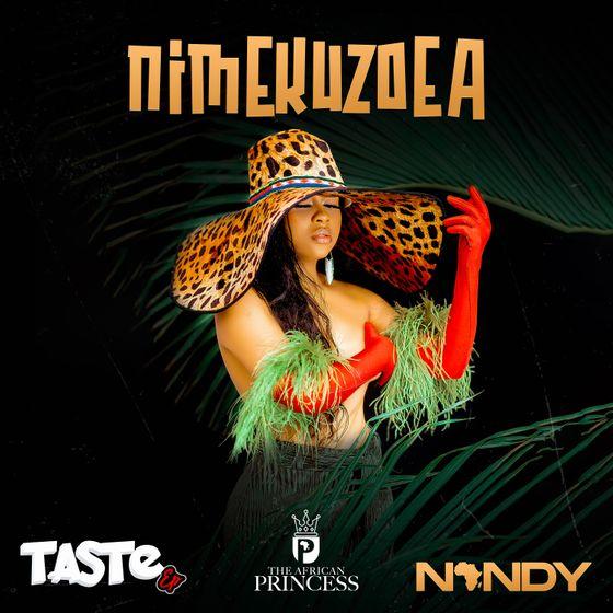 Nandy – Nimekuzoea mp3 download