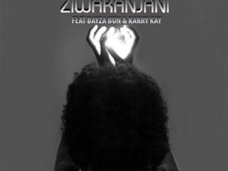 DJ Nitrox – Ziwakanjani Ft. KarryKay, Bayza Bun