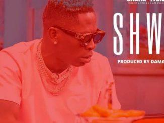 Shatta Wale – Shw3